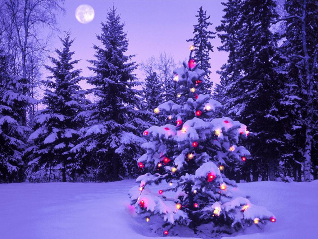Immagini Paesaggi Natale.Natale Paesaggi